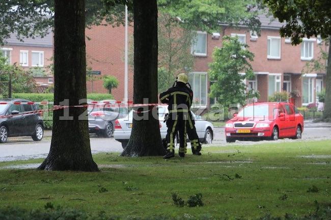 foto: Brandweer zet gedeelte plantsoen Toon Borghuisstraat Oldenzaal af wegens gevaar voor vallende takken