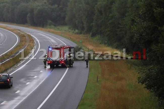 Boom valt op A1 bij De Lutte en zorgt voor een gevaarlijke situatie