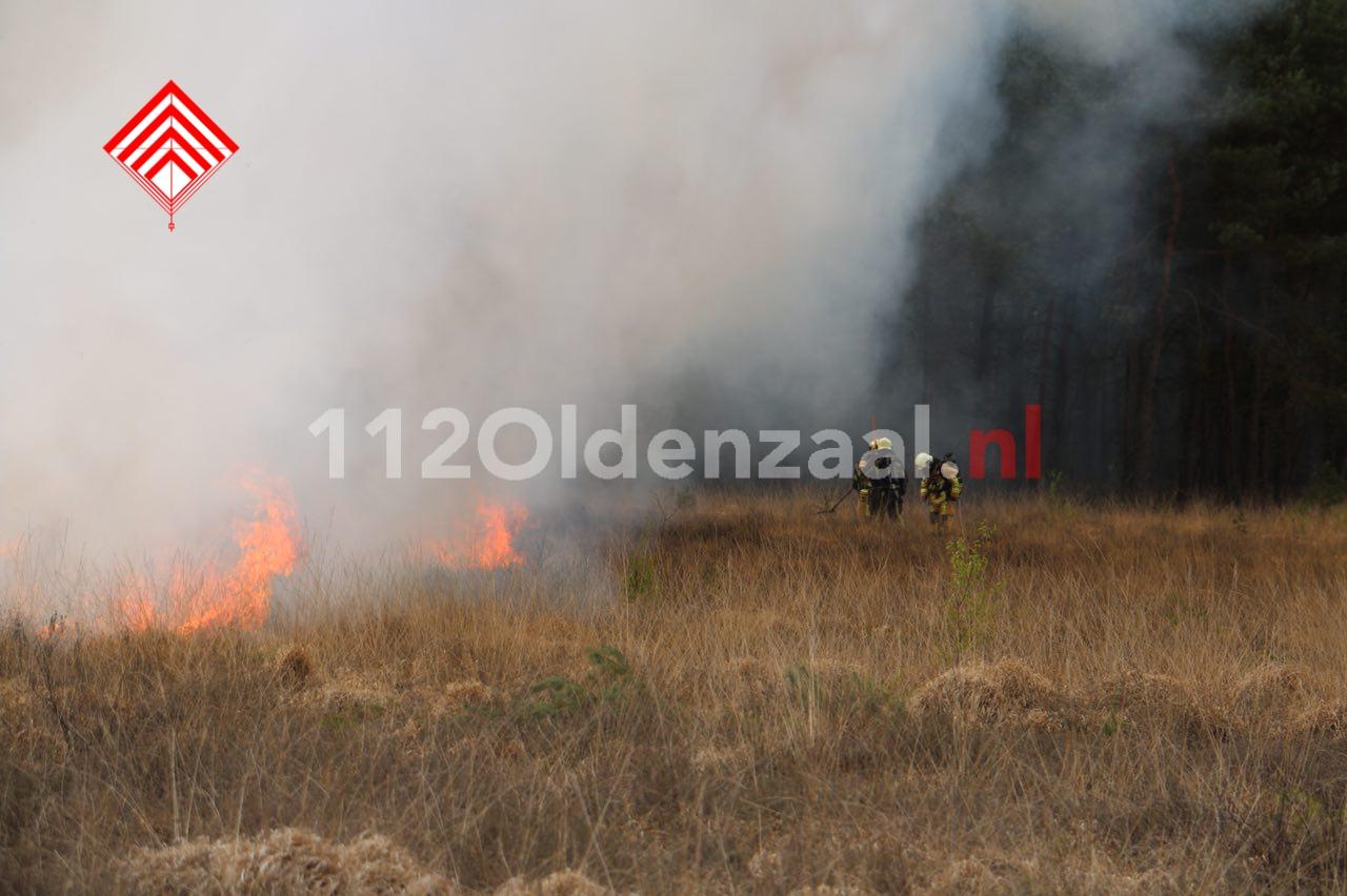 foto 2: Grote brand in heidegebied bij Beckum, natuurgebied ontruimd