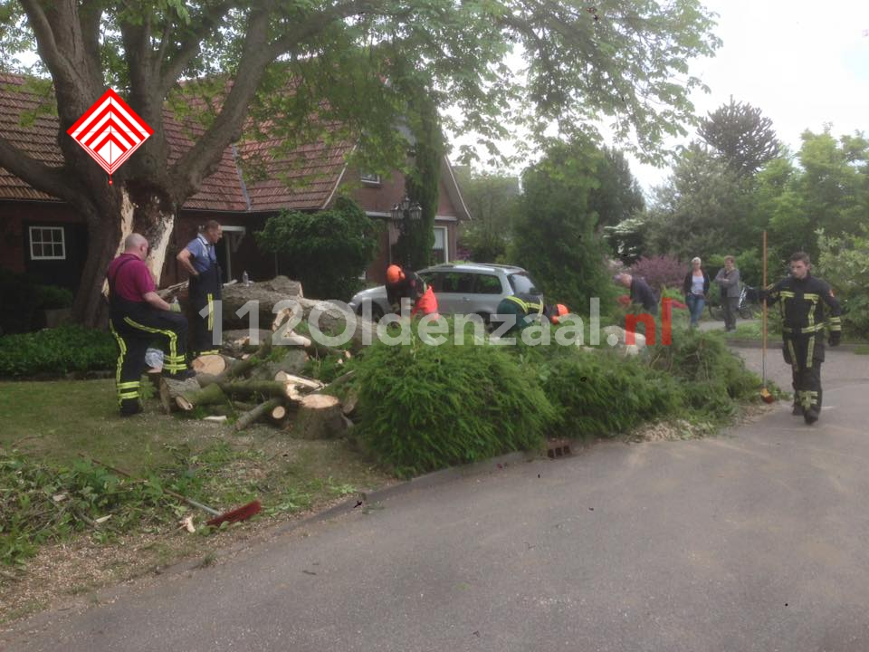 Foto: Brandweer rukt uit voor afgebroken tak in Ootmarsum