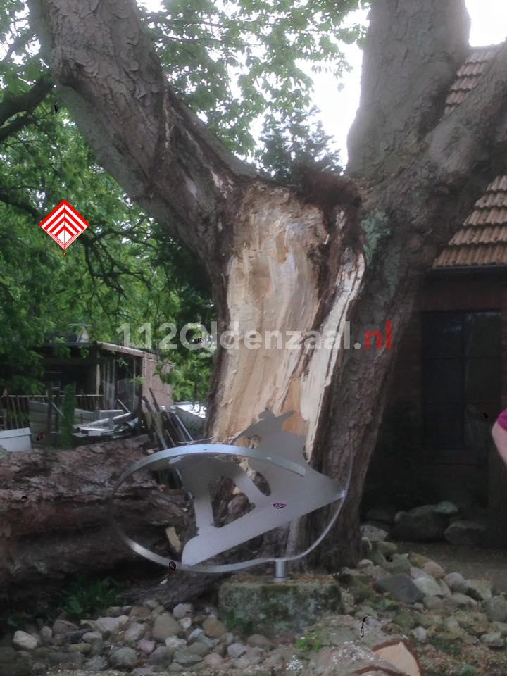 Foto 2: Brandweer rukt uit voor afgebroken tak in Ootmarsum