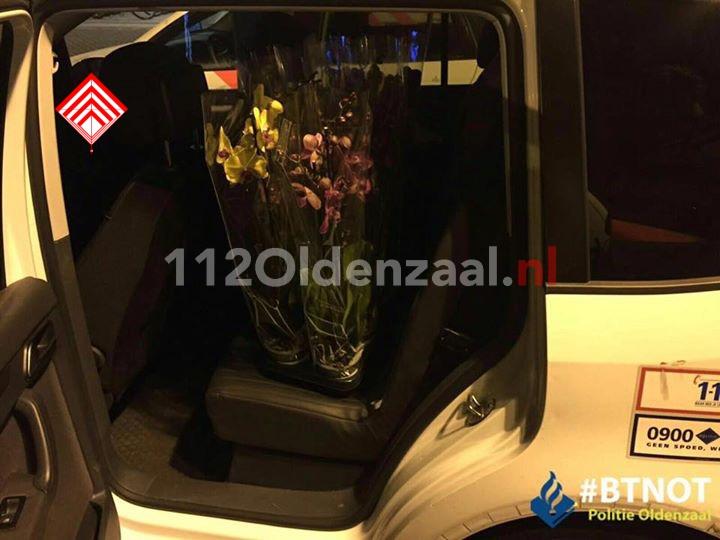 Foto 3: 32-jarige Poolse man aangehouden voor diefstal 200 liter diesel en bloemen in Oldenzaal