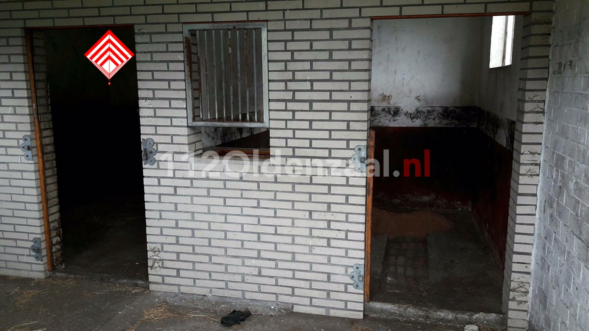 Foto: Houten deuren gestolen bij paardenschuur in Oldenzaal