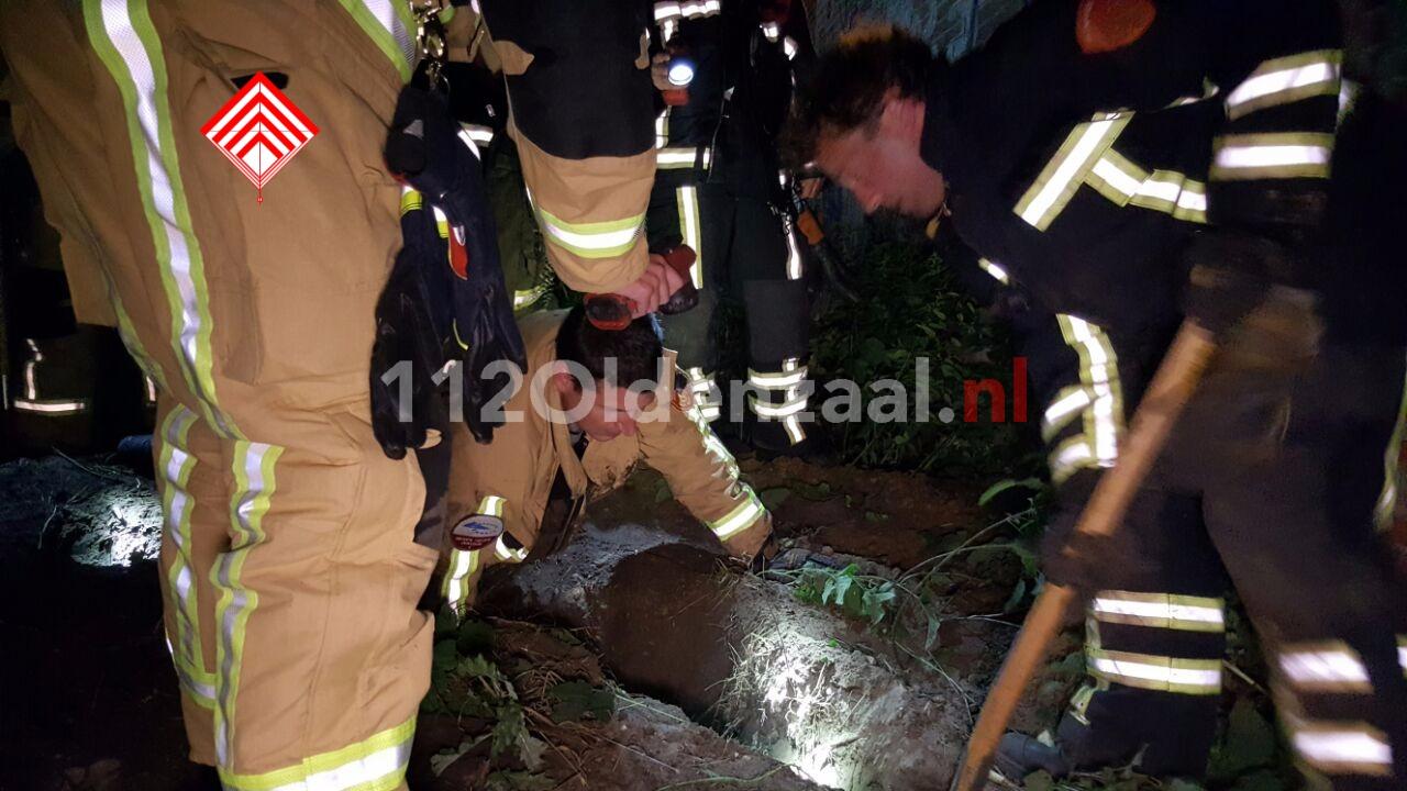 foto 3: Brandweer opgeroepen voor zoektocht hondje in Hengelo