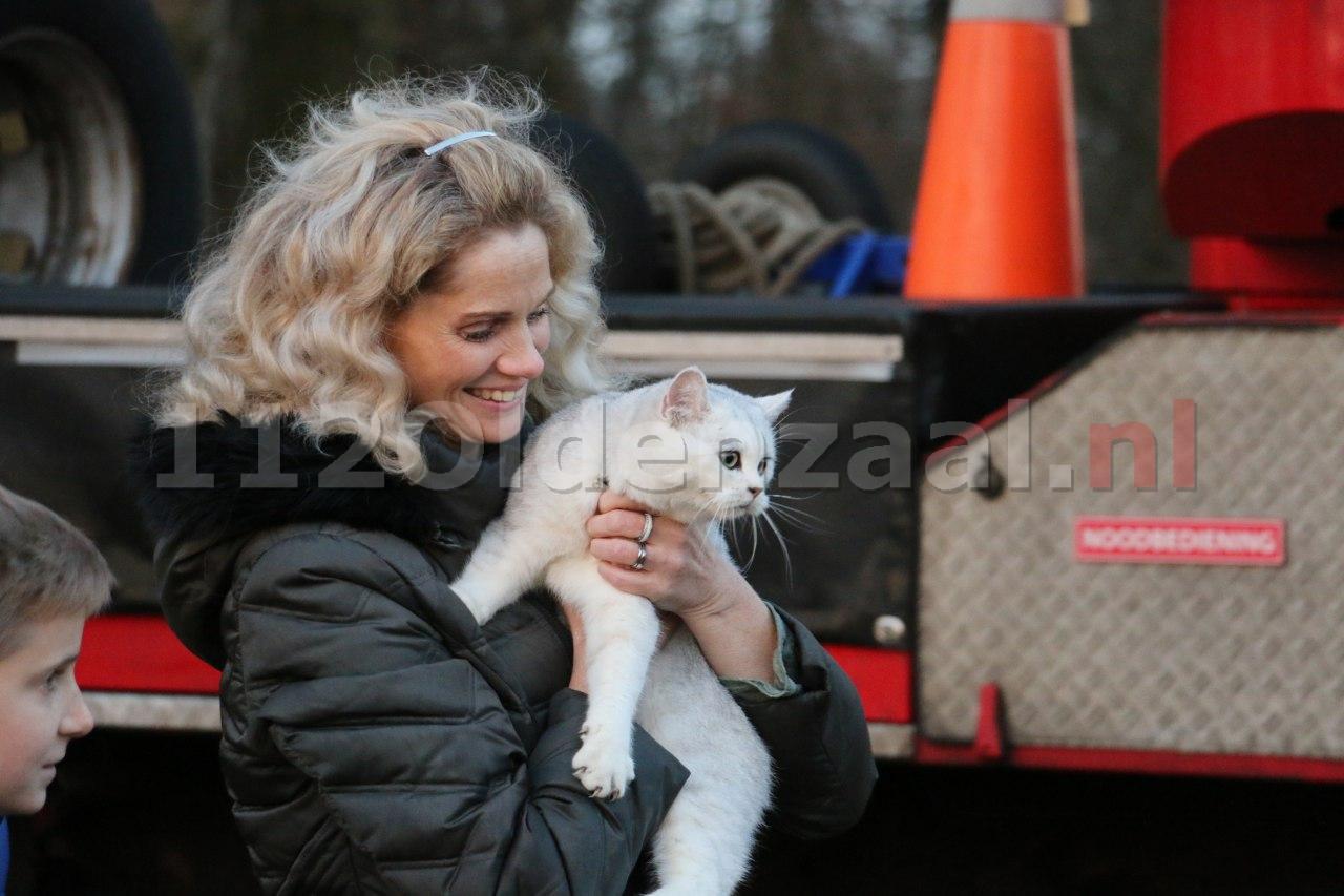 Foto 2: Reddingsactie voor kat in boom Oldenzaal succesvol afgerond