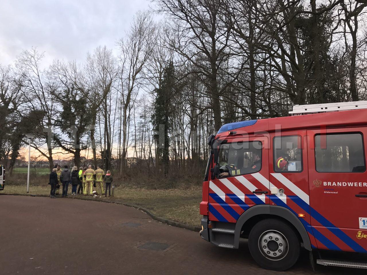 Foto: Brandweer rukt opnieuw uit voor poes in boom Oldenzaal