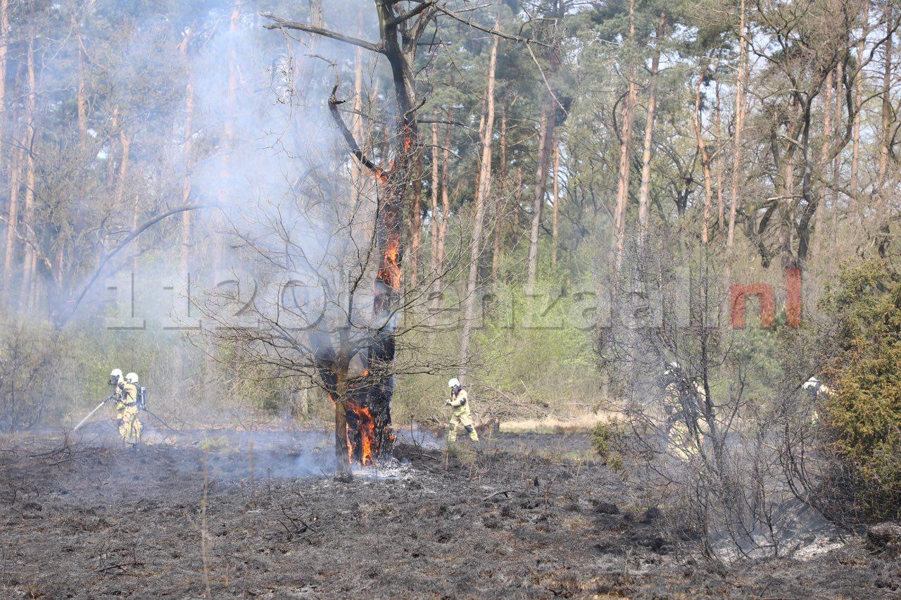 UPDATE: Grote brand in natuurgebied bij Beuningen onder controle