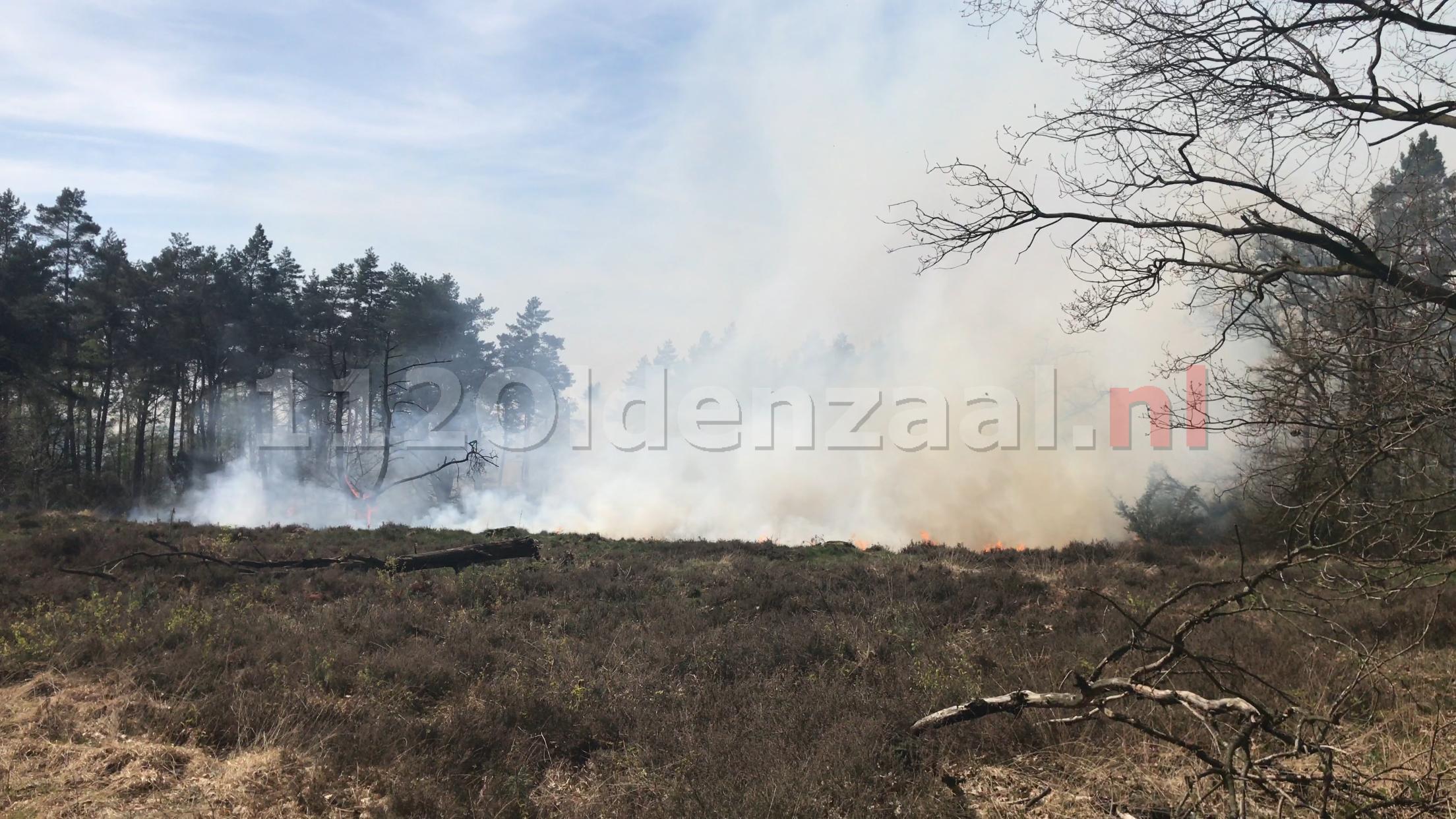 Foto: zeer grote natuurbrand in Beuningen