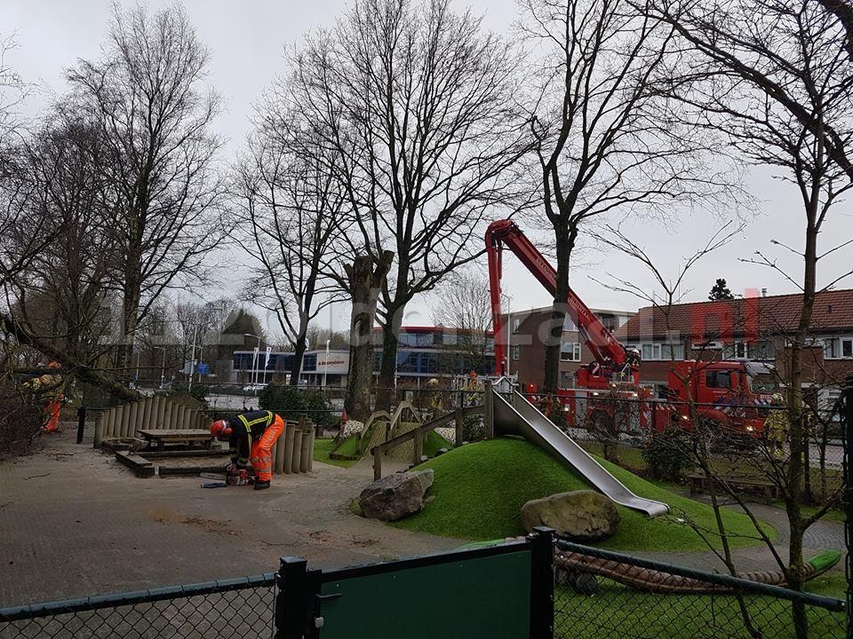 Boom valt op kinderdagverblijf in Oldenzaal