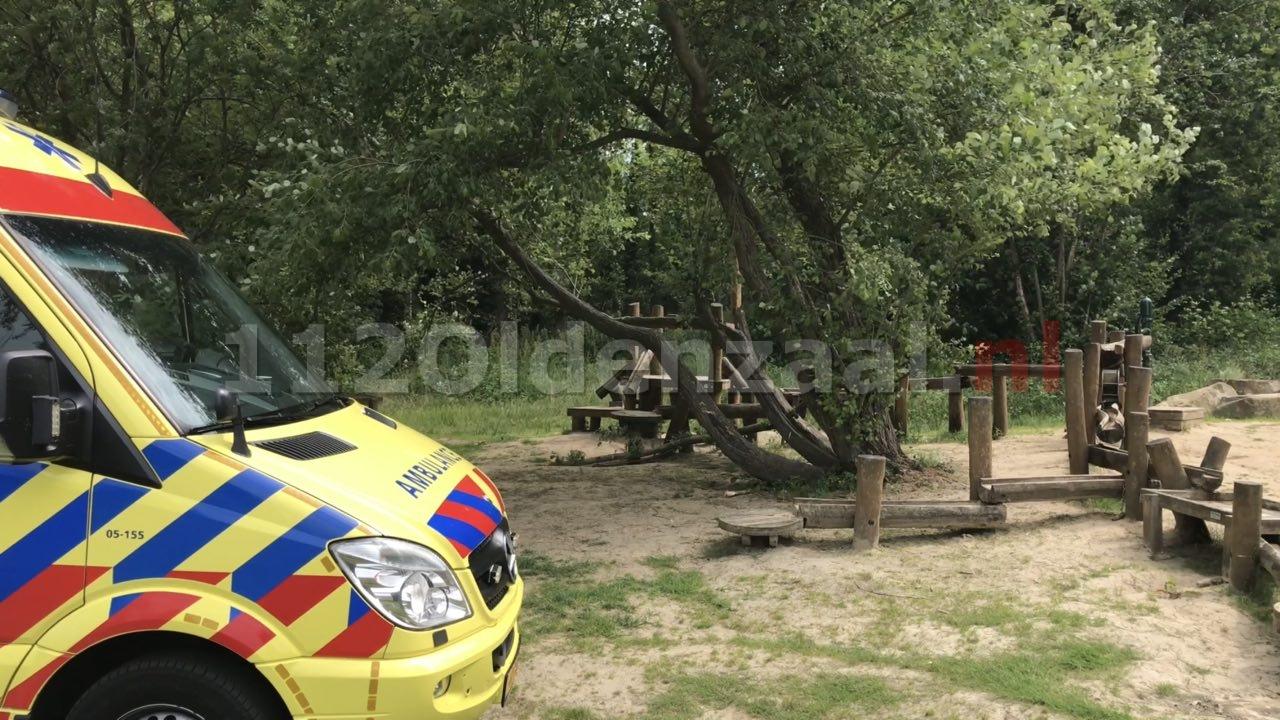 Video: Hulpdiensten rukken uit naar Hulsbeek Oldenzaal; kind uit boom gevallen