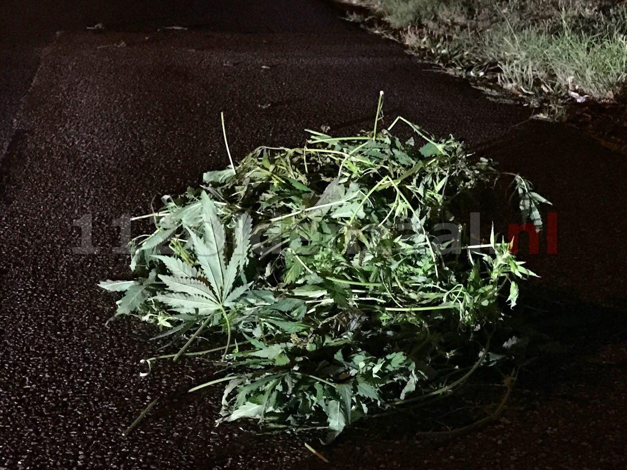 Forse hoeveelheid hennepafval gedumpt op Graveneslaan in Oldenzaal