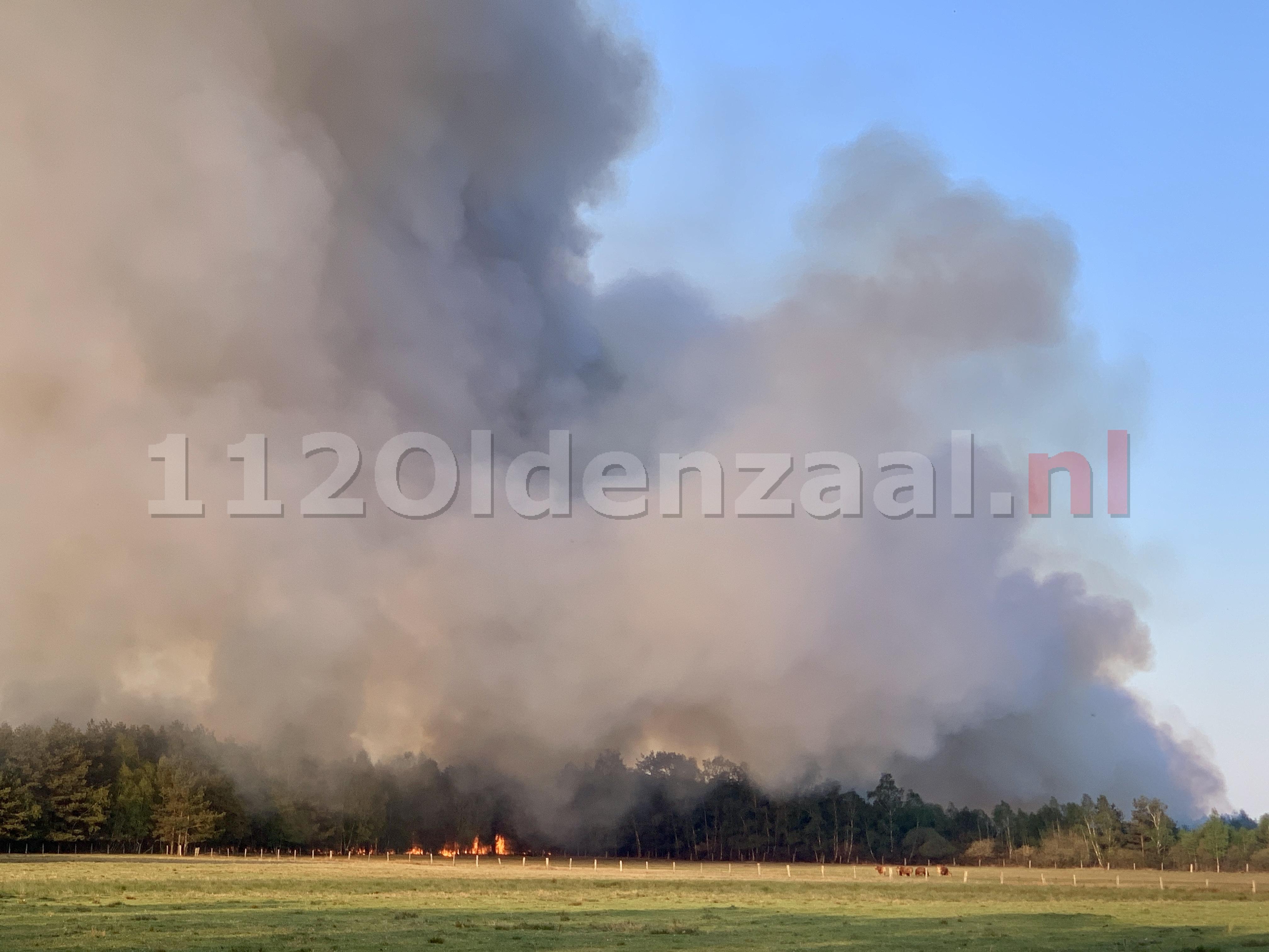 VIDEO: Grote rookontwikkeling bij grote veenbrand net over de grens in Duitsland