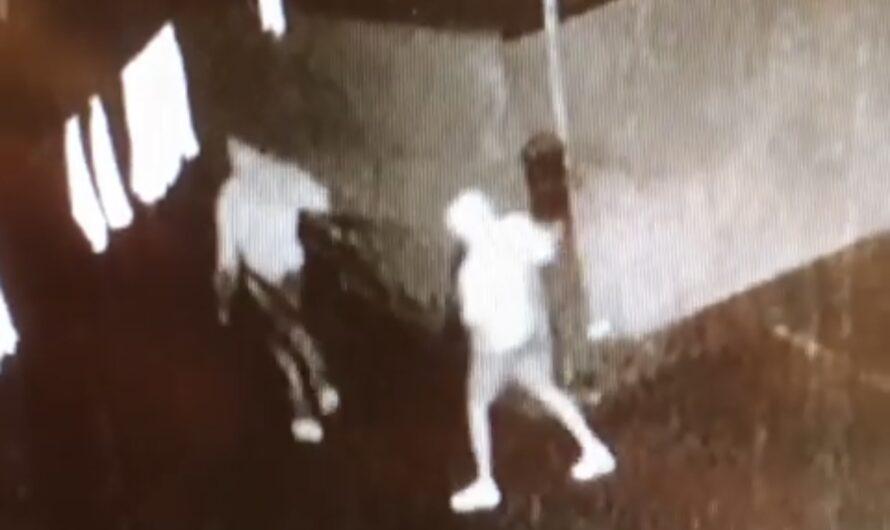 VIDEO: 14 barkrukken weggenomen bij Rouwhorst Zalencentrum